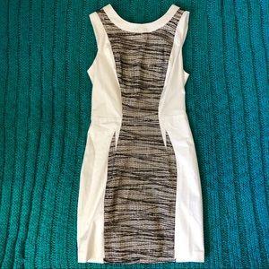 Bebe White Lace Mesh Bodicon Mini Dress Small